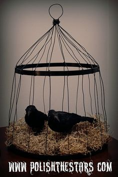 Creepy birdcage made out of an embroidery hoop