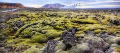 25 Things You Didn't Know About Iceland www.whygoiceland.com