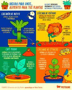 Container Gardening Vegetables, Vegetable Garden, Indoor Garden, Compost, Gardening Tips, Succulents, Hacks, Flowers, Green