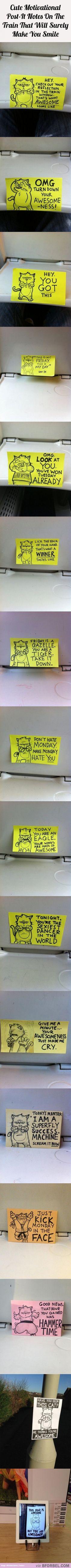 Hilarious Motivational Cat PostIt Notes Found On A Train On - Hilarious motivational cat post notes found train