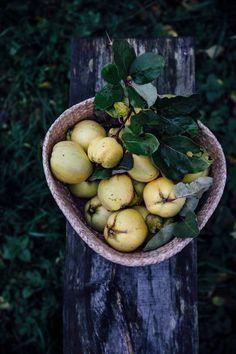 Our Food Stories // autumn breakfast: hemp milk-quinoa-oat porridge with quinces and apple compote