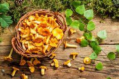 Rókagomba, az ínyencek kedvence | Mindmegette.hu Paella, Stew, Stuffed Mushrooms, Pumpkin, Vegetables, Health, Ethnic Recipes, Food, Outdoors