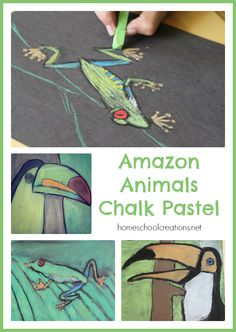 Amazon Animals Chalk Pastel - uses a mix of chalk and oil pastels to create an art project for kids.