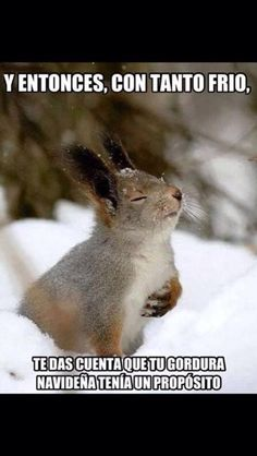 Para reír con este frío invernal en primavera Rt si te gusta .