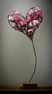 Heart ♡♡♡