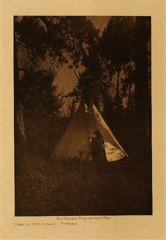 Camp in the forest - Kutenai,1910. Edward Sheriff Curtis Photography.