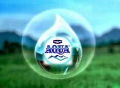 Management Training Aqua Danone