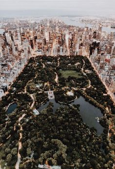 Style beaches Central Park from above - New York City photo by Trent Szmolnik ( on. Central Park from above - New York City photo by Trent Szmolnik ( on Unsplash New York Trip, New York Life, New York Travel, Travel Usa, Overseas Travel, London Travel, Travel Plane, Amsterdam Travel, Cruise Travel