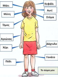 human body parts for kids parts of the body - Human Anatomy Charts Teaching French, Teaching Spanish, Teaching English, French Classroom, Spanish Classroom, Spanish Lessons, English Lessons, Learning Arabic, Kids Learning