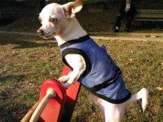 Ken en el parque.