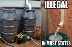 What the what? Utah, Colorado, and Washington made it illegal to collect rainwater stating that the water belongs to the government. WOW!! CAN YOU IMAGINE?? You can't??? You are still half-asleep. WAKE THE FUDGE UP!!!