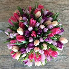 Imagine flowers, spring, and tulips Tulips Flowers, Love Flowers, My Flower, Daffodils, Spring Flowers, Flower Power, Planting Flowers, Beautiful Flowers, Flowers Gif