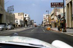 Traffic Scene, Wilshire Blvd, Los Angeles, 1954