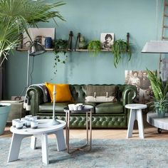 blauwe muur, houten plank met Leer. veel planten.