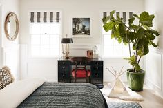 This white walled bedroom boasts a large potted plant, cat tipi, black desk and red chair, grey linens, and striped curtains.