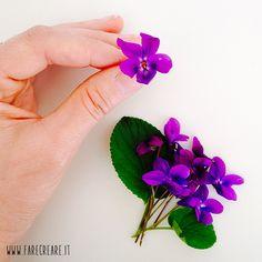 Stilllife di fiore violetta. http://goo.gl/GM5UUN