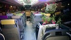 Autobús decorado para evento de una empresa de Viveros en #Madrid. Molan las fotos? Madrid, Vivarium, Photos, Plants