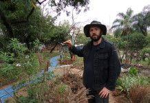 Artista resgata vegetação de cerrado em praça da Pompeia