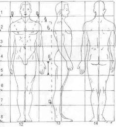 human body dimensions in architectural design - Google Search