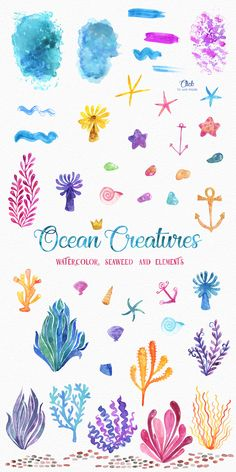Ocean Friends Watercolor Clipart by LeMagiqueBoutique on Creative Market Watercolor Clipart, Watercolor Ocean, Watercolor Paintings, Under The Sea Drawings, Sea Creatures Drawing, Ocean Drawing, Underwater Painting, Animal Art Projects, Animal Doodles