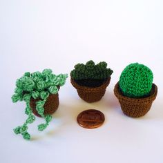 Cute!!!!!!!  Miniature crocheted succulents  $12.00, via Etsy.