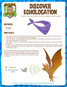 Discover how bats hear by playing a fun echolocation game. See how your senses compare to a bat& Summer Science, Animal Science, Stem Science, Kindergarten Science, Elementary Science, Science Fair, Teaching Science, Science For Kids, Primary Science