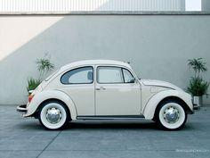 VW Beetle White