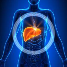 Die Reinigung von Leber und Gallenblase zur Verbesserung der Gesundheit und des Wohlbefindens