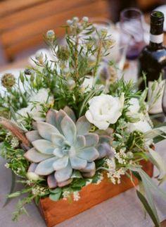 Wedding center pieces succulent