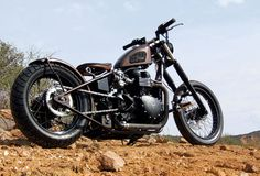 cool bobber rat bike - Modern Triumph twin with a peanut tank and hard-tail frame