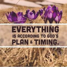 Everything According To God's Plan &Timing