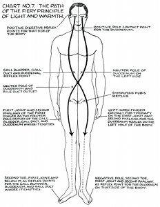 images about Rolfing: Anatomy Trains, Polarities on . Alternative Therapies, Alternative Medicine, Tai Chi, Ayurveda, Health Heal, Acupressure Points, Holistic Healing, Holistic Medicine, Qigong
