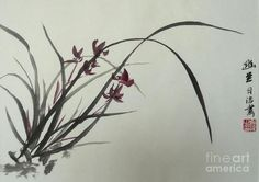 Chinese Orchid Painting by Birgit
