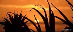Fotos Cotillo Sunsets - Soulsurfer Hotel Cotillo Fuerteventura