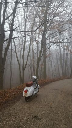 It was so cold and foggy outside, but I had to go for a ride.  #vespa #vespa50special #autumn