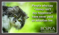 """People who say """"money can't buy happiness"""" have never paid an adoption fee"""
