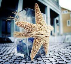 starfish on vase. i love starfish