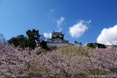 Ok, guessing time! ^__^ Who knows what castle this is?  #Japan