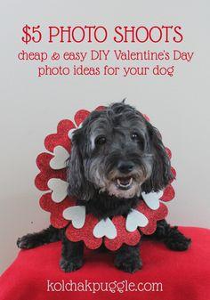 valentine's day msg