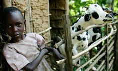 World hunger best cured by small-scale agriculture: report ...