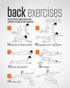 Workout routines for women, gym routine, abs workout for women, workout for Morning Workout Routine, Workout Routines For Women, Gym Routine, Abs Workout For Women, Workout For Beginners, Exercise Routines, Best Abdominal Exercises, Back Exercises, Abdominal Fat