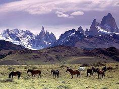 La natura selvaggia, le montagne... danno il senso di tranquillità che si è perso nel ventunesimo secolo...