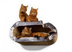 Cat-on la maitresse wall kit - wall mounted cardboard cat bed