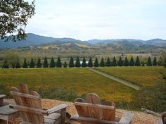 Copain Winery- Recommended by Sunset for lovely views.  Wine to try: Single Vineyard Anderson Valley Pinots and Syrahs.
