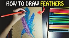 How to draw feathers with pencil colors