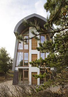 The Dune House in north Holland has exposed tree-trunk columns