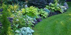Amazing Front Yard And Backyard Landscaping Ideas You Need To See 25 Erstaunliche Vorgarten- und Hin Front Garden Landscape, Front Yard Landscaping, Landscaping Ideas, Tropical Landscaping, Back Gardens, Outdoor Gardens, Ideas Para El Patio Frontal, Professional Landscaping, Love Garden