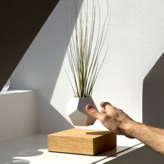 Bring a little magic into your home with these levitating planters.