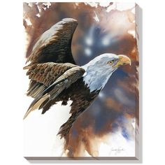 """""""Spirit of the Eagle (Bald Eagle)"""" Wrapped Canvas Art - American Expedition Eagle Images, Eagle Pictures, Wildlife Paintings, Wildlife Art, Eagle Drawing, Eagle Painting, Eagle In Flight, Eagle Art, Nature Sketch"""