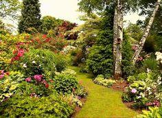 www.rustica.fr - 4 vidéos pour reproduire chez soi un jardin de rosiériste